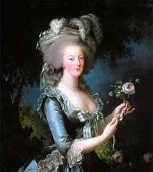 Ce portrait de Marie-Antoinette, réalisé par Élisabeth Vigée Le Brun, la montre en robe bleue décolletée aux manches mi-courtes et portant un chapeau à plumes. Elle tient une rose à la main.
