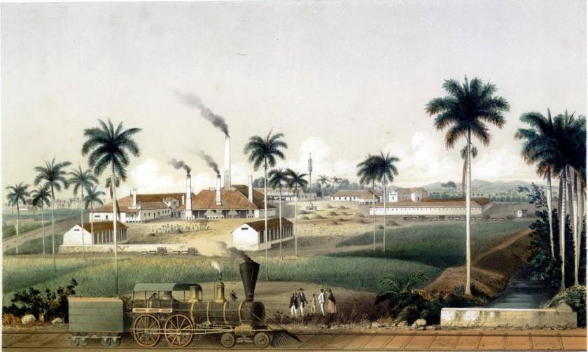 Ce dessin montre un ingenion cubain : au premier plan, on voit une voie ferrée et une locomotive en marche, avec un groupe de colons blancs et deux personnes noires. Derrière, on voit l'ingenion avec des bâtiments de vie et de production. Dans une cour, des esclaves travaillent. L'image montre également des palmiers, et des collines en arrière-plan.