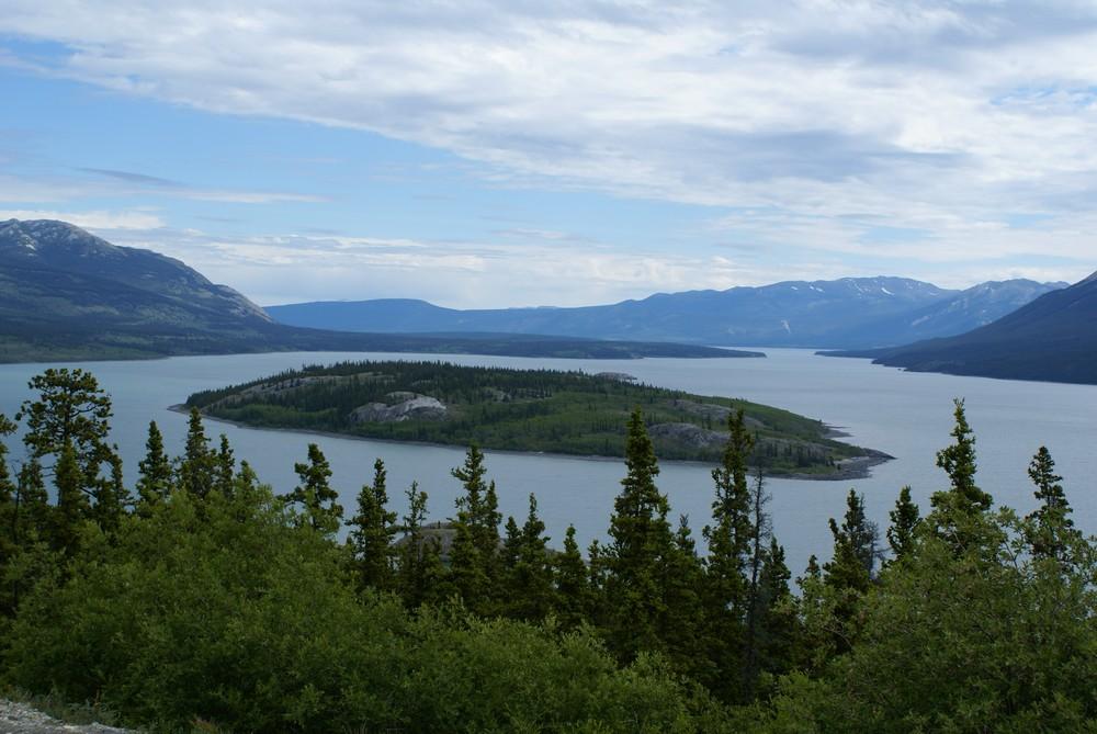 Cette photo montre l'île de Bove sur le lac Tagish, dans le Yukon au Canada. On voit une rangée d'arbres au premier plan, devant le lac et l'île au milieu. Des montagnes se dessinent à l'arrière-plan. Le ciel est nuageux.
